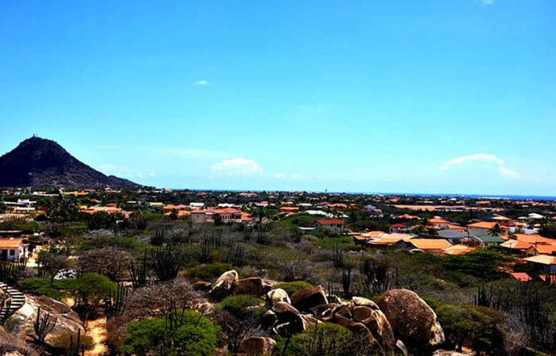 The Aruban landscape. Photograph by Shirley Rufin.