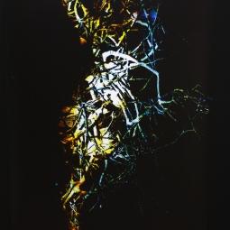 Work by Shirley Rufin