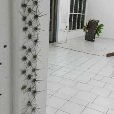 Frances Gallardo, Detail of Untitled 3 (Ateliers '89), Cactus thorns on doorframe, 2016. Photo courtesy of Katherine Kennedy
