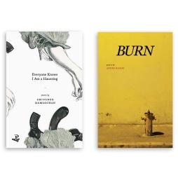 Book cover designs by Kriston Chen