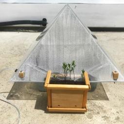 Taisha Carrington, Ecosphere Reliquary: 7th Iteration, Seawater, acrylic, plants, dirt, 2020